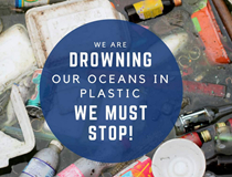 Solutions on Plastic in our Oceans